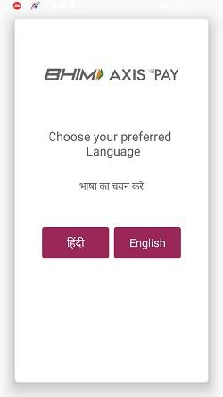 bhim axis pay upi app 2