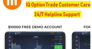 iq iption customer care